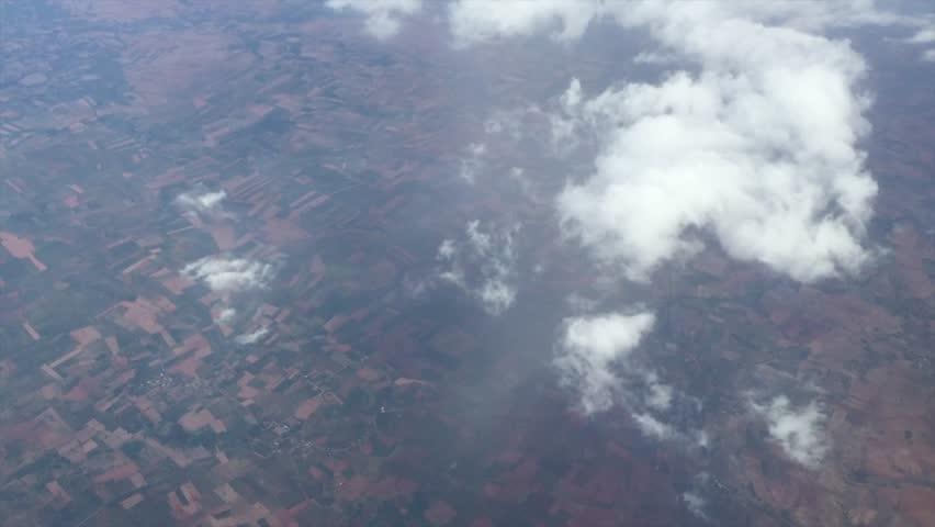 description aerial flying birds - photo #14