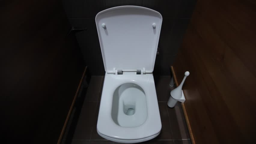 lowering the water from the toilet man's hand, European appearance, standing near the toilet brush to clean the toilet. the toilet is white plastic lid. wooden walls in the booth, brown.