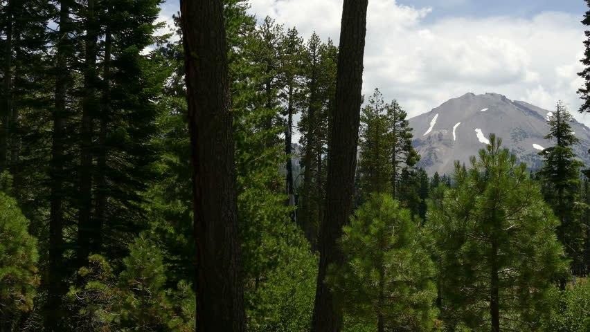 Mount Lassen Peak seen through a forest of pine trees in Lassen Volcanic National Park in California, United States of America.