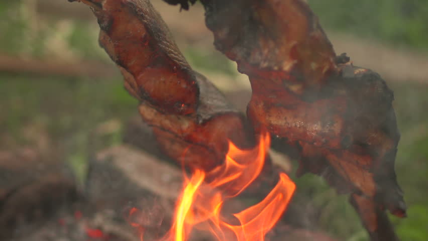 Cooking fish on an open fire stock footage video 6839071 for Fish on fire