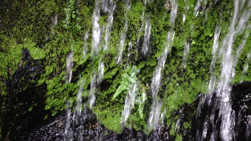 small waterfall - 4K stock video clip