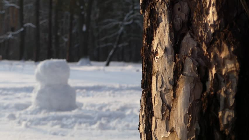 The girl makes snowman in winter in the woods. Focus on the twig in the foreground. In the background out of focus is girl with snowman. Action in real time. - HD stock video clip
