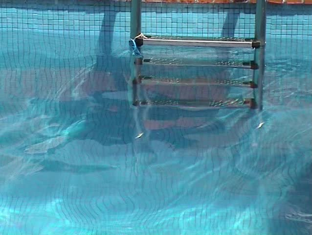 Four Foot Depth Marker On Side Of Swimming Pool Stock