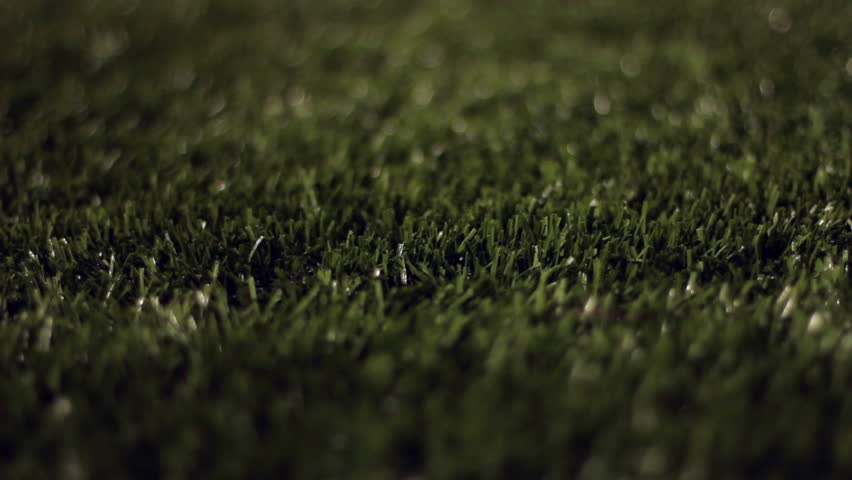 Close up dolly of turf grass