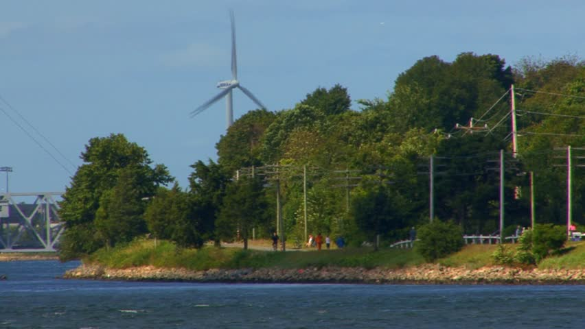 A Family Walk Their Dogs At The Cape Cod Canal Train