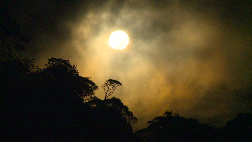 full moon over jungle fast clouds