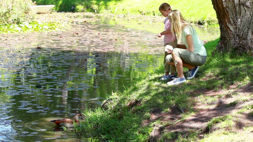 Mother and her child nourishing ducks in a park - HD stock footage clip