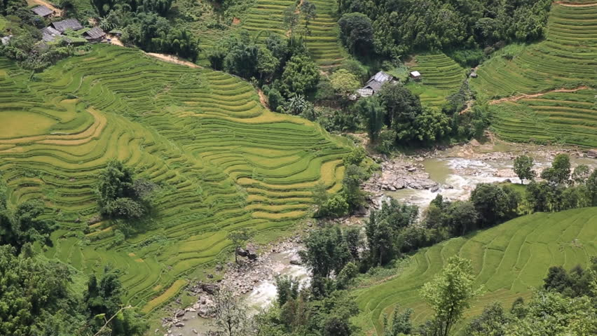 Rice plantation terraces panning in Sapa, vietnam