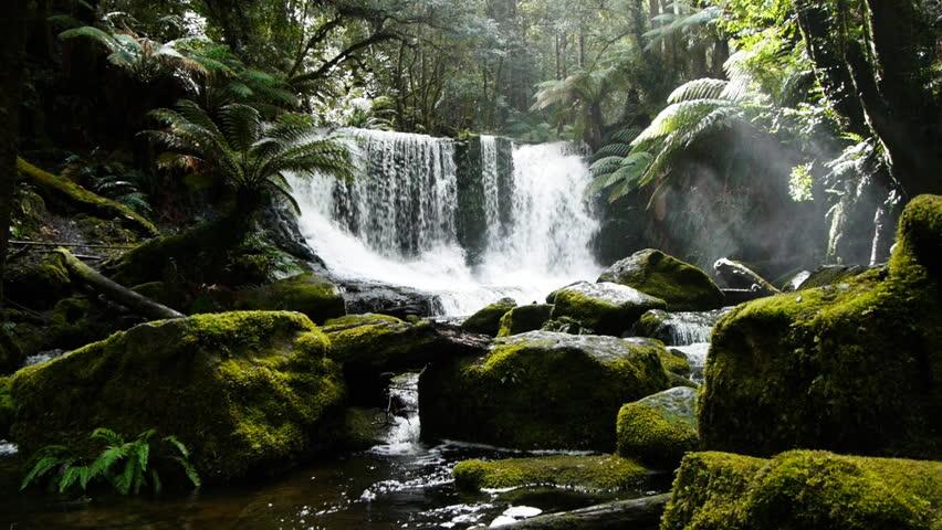 a dolly shot of horseshoe falls in tasmania, australia - HD stock video clip