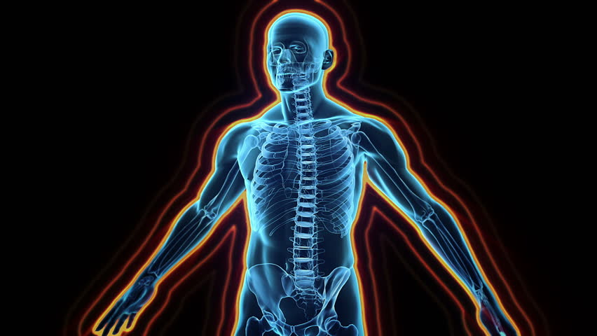 Immune system defence, body loop rotation on black background - HD stock footage clip