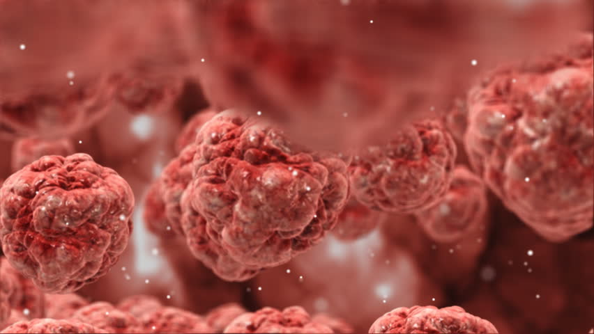 an analysis of the principles of cancer cells in the human body There are different types of cells in the human body which make up the tissues and organs a cell is the basic unit of our life you can read more about basic types of cells in the living beings.