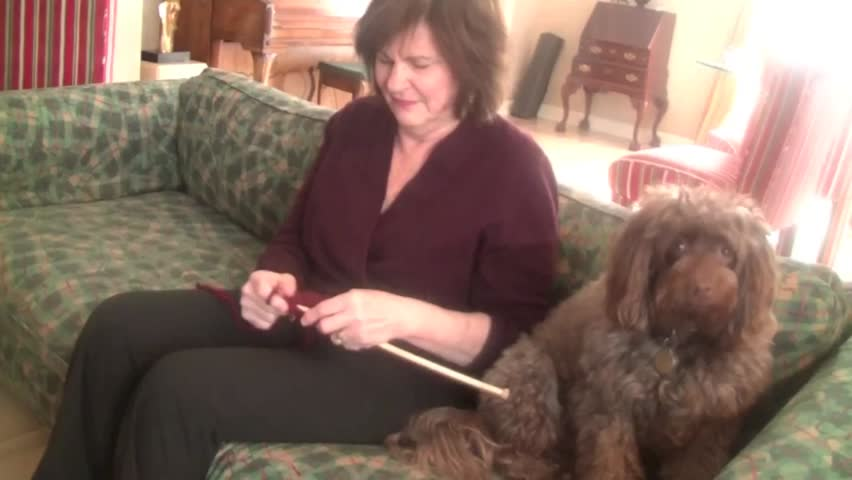 Woman knitting with her pet dog