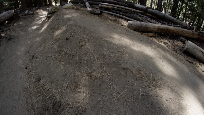 A mountain biker rides through a tree filled off road trail in the shadows, filmed at the Lake Tahoe National Park in HD