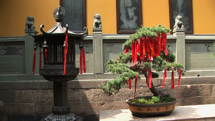 Chinese lantern and Bonsai tree holding prayer ribbons, Jade Buddha Temple, Shanghai, China  - HD stock video clip