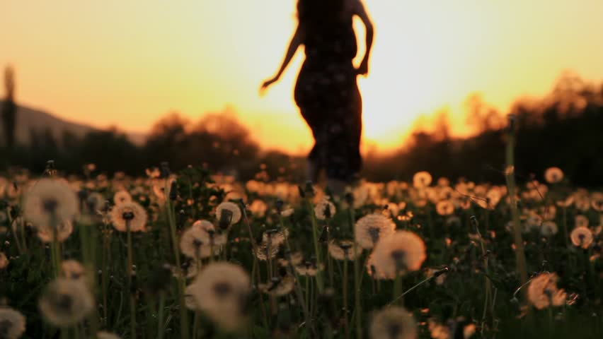 Beautiful Young Woman in a Hippy Dress Running Down a Dandelion Field at Sunset