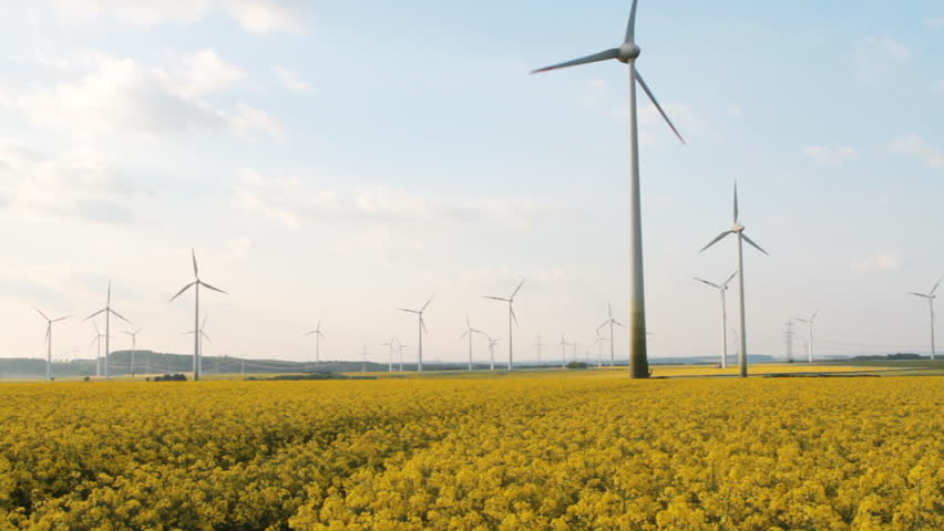 ... used as bio-fuel, Wind energy used to generate electric power. Stock