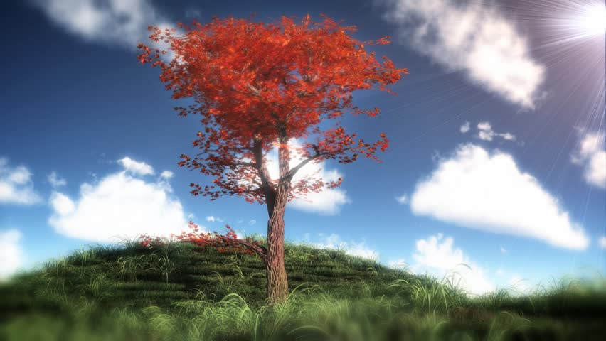 Digital animation of blooming tree and bright sky behind it