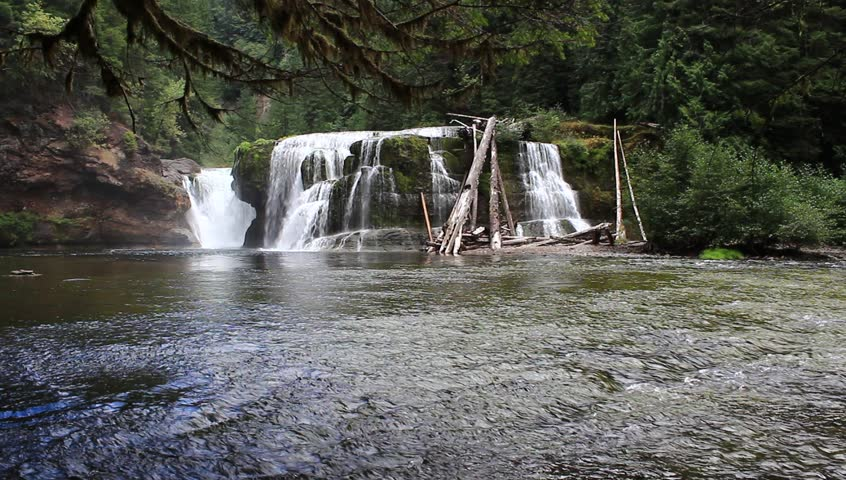 river falls cougars personals Lewis river waterfalls is a hiking, mountain biking adventure located in or near cougar, wa enjoy & research cougar, washington with trail guides, topo maps, photos, reviews & gps routes on.