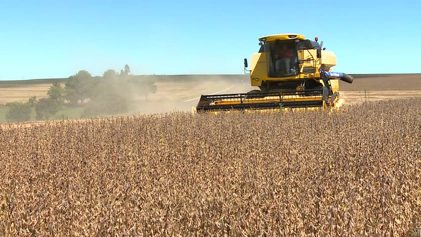 machine harvesting soybeans in a farm with a road in background - HD stock video clip