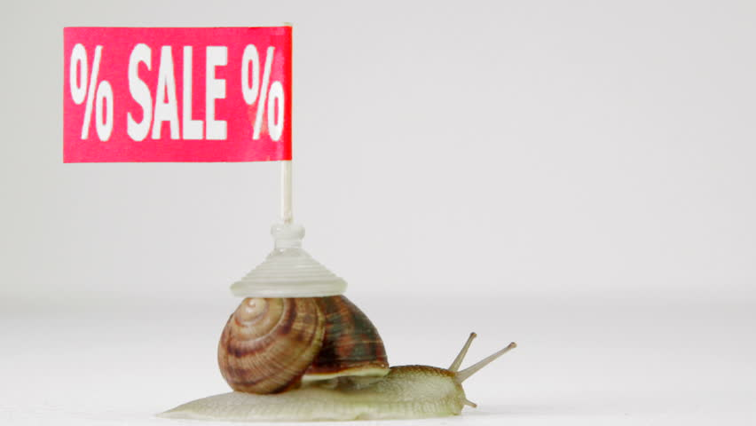 Snail crawling with sign SALE from left to right on a white background