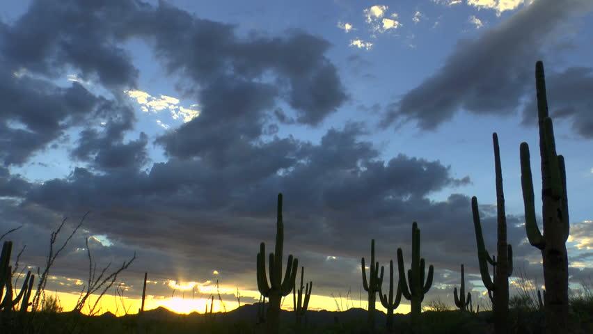 Time Lapse, Magnificent sunset sweeps across Arizona desert saguaro cactus landscape. 1080p - HD stock video clip