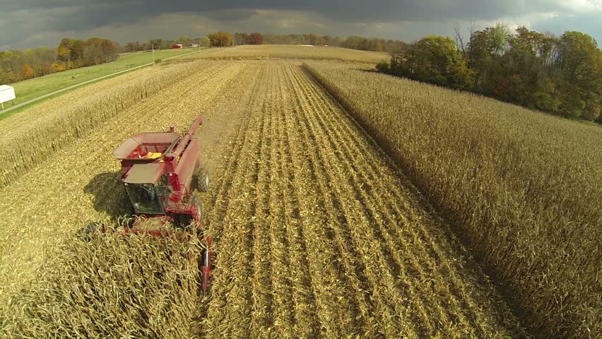 Aerial footage of combine harvesting cornfield on a farm in the midwest United States.