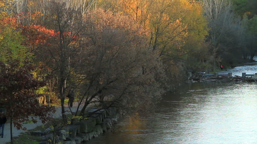 Picturesque Autumn landscape at the park beside a river later afternoon