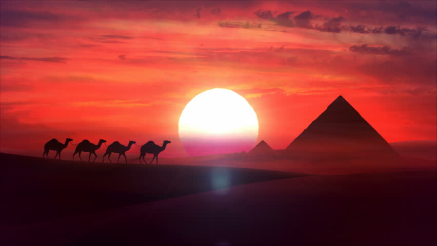 A camel train travels across a desert in the sunset. Sand dunes silhouettes, pyramides of Giza and cloudy cloud sunset in the background. Animation HD - HD stock footage clip