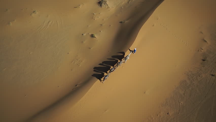 WS POV ZO Tuareg man with camel train in desert at Morocco