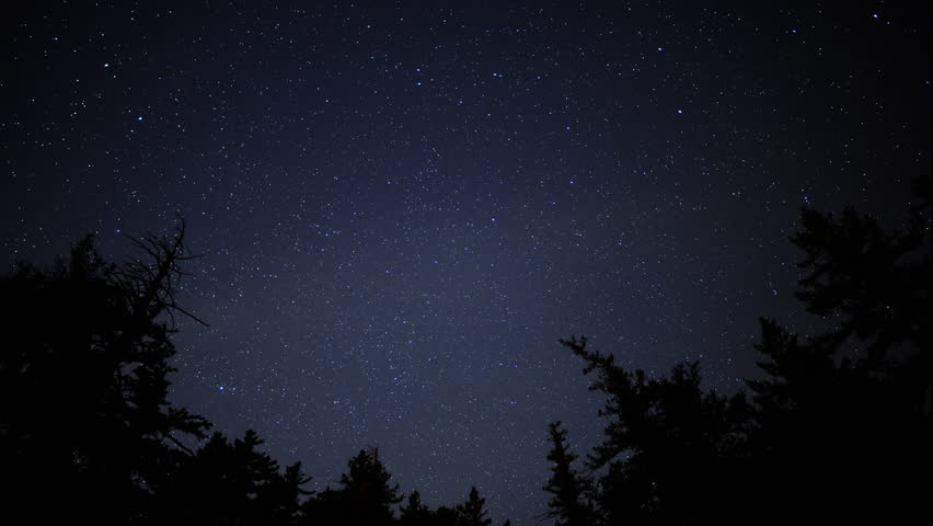 4K Time Lapse of Starry Sky over Alpine Forest -Zoom In-