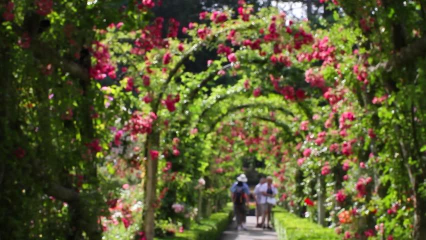 Victoria british columbia canada circa may 2012 high for Garden design victoria bc