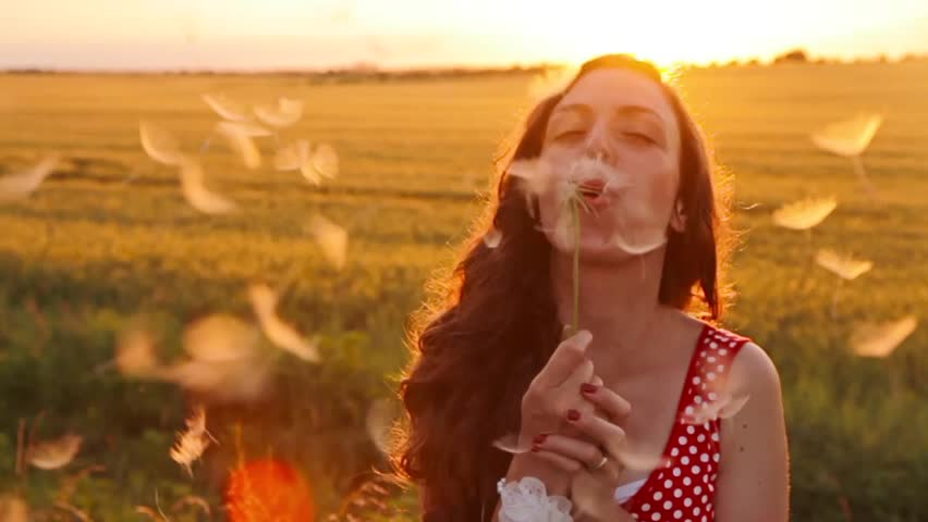 Beauty Young Woman Blowing Dandelion Wishing Joy Concept