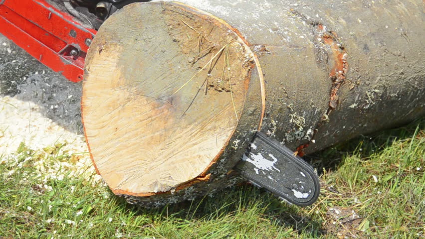 Cutting slices of wood log with a chain saw stock footage for How to cut wood slices