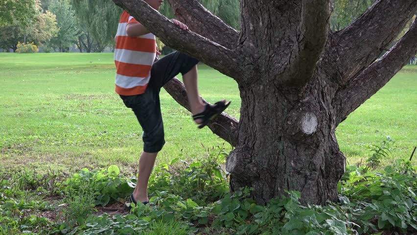 Hispanic child or boy of about 9 years old climbing a tree in a park. Recreation outdoors for a kid. The simple things in life.