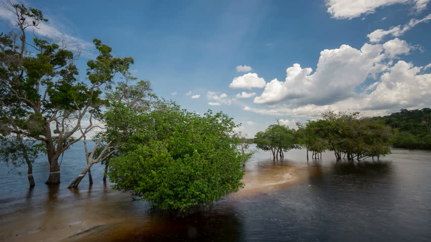 Time Lapse of beach in Rio Negro, Amazon, Brazil