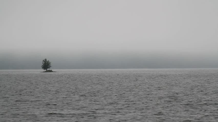 Heavy mountain fog and rain on a wilderness lake, small island with single tree, waves - bad weather