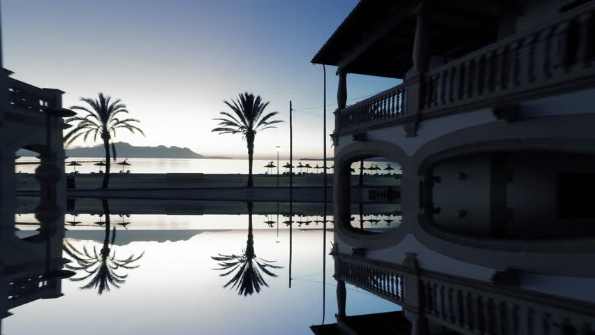 silhouette of palm trees at sunrise sky. aerial view of beach coast. mirror reflection background