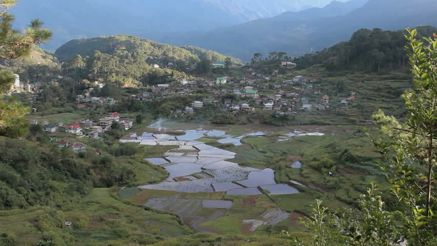 rice terracesin the Philippines