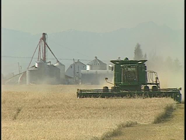 head on green harvester long lens, another harvester behind. (BetacamSP) - SD stock footage clip