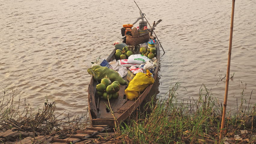 Small boat  loaded with green coconuts  and bags of rice on the edge of the river  ,  southeast asia, mekong river, Cambodia