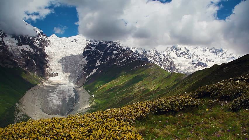 View of the alpine meadows with rhododendron flowers at the foot of Mt. Tetnuldi. Dramatic unusual scene. Upper Svaneti, Georgia, Europe. Main Caucasus ridge. Beauty world. HD video (High Definition)